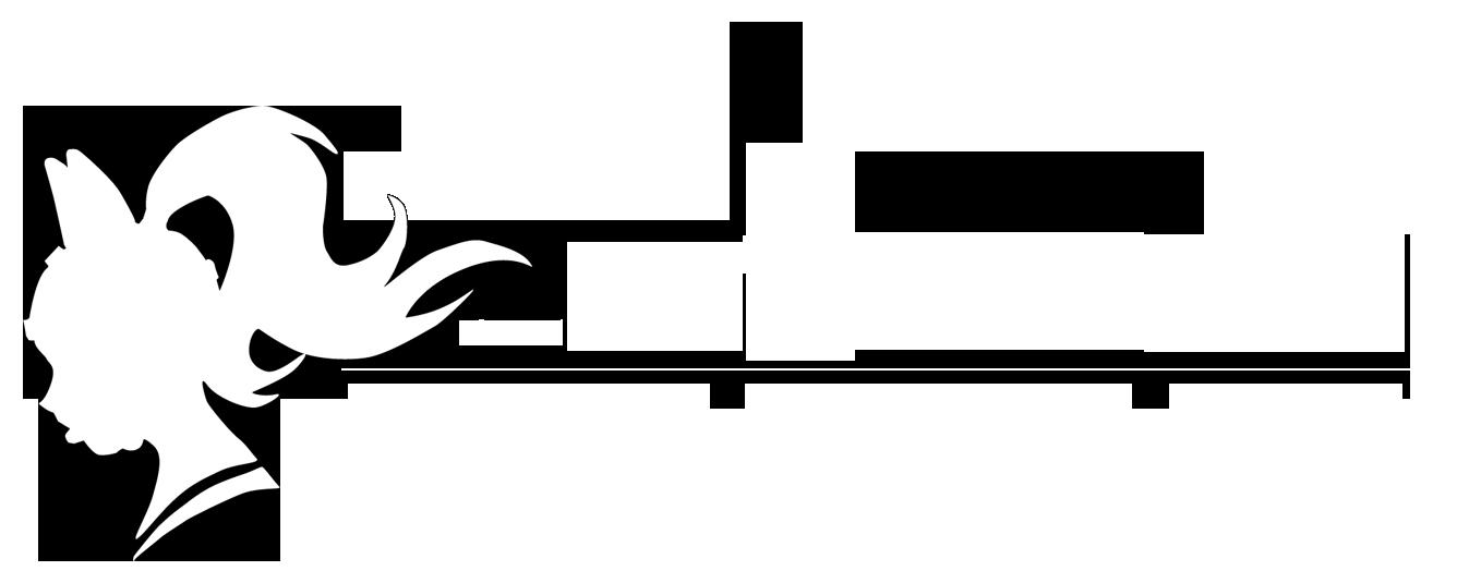 Joy of Sunfire