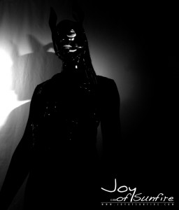 Joy of Sunfire - Set 04 Low-Key - 10110 - 25p