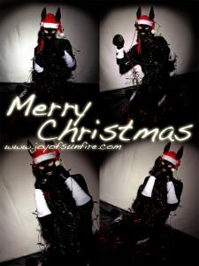 Joy of Sunfire - Merry Christmas 2016